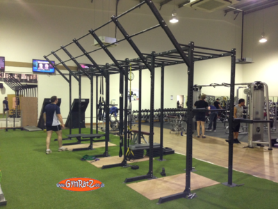 'Build Your Own' CrossFit Training Rig